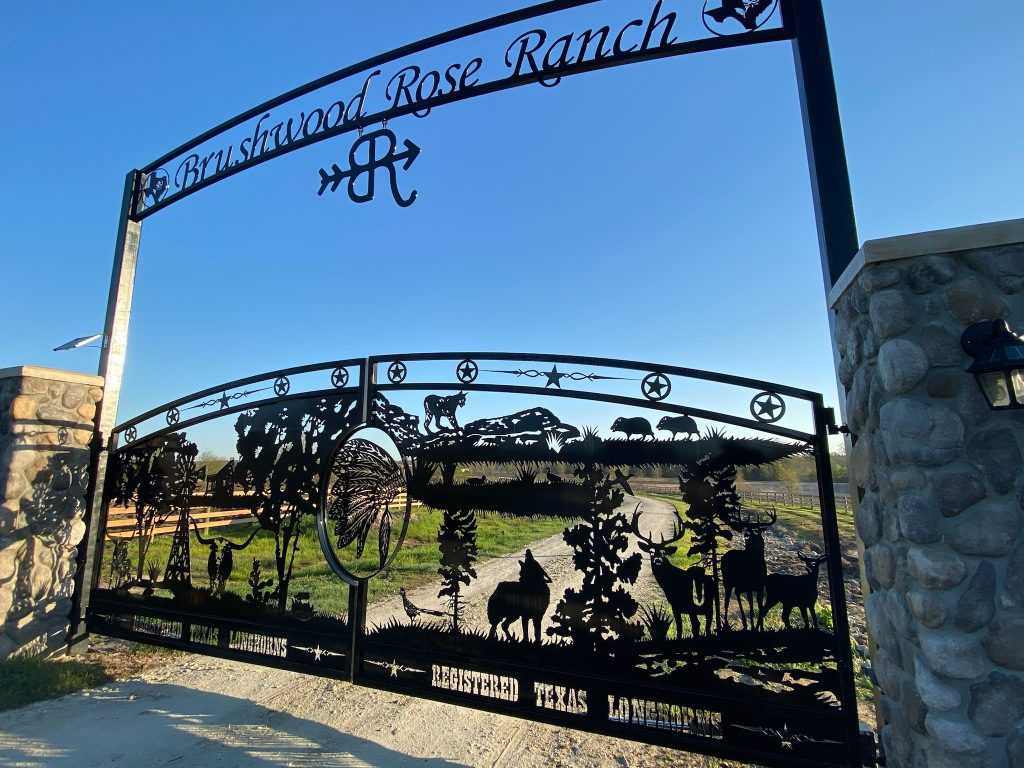 Ranch Entrances and Driveway Gates at Trails West Gate Company