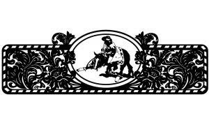 bull rider gate - cattle gate